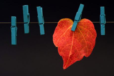 Outono da Vida - O que tem de deixar partir? Como está a sua autoconfiança?